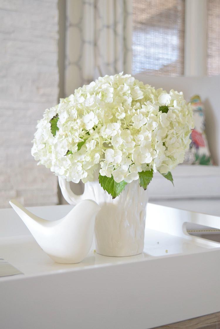 happy white hydrangea 2