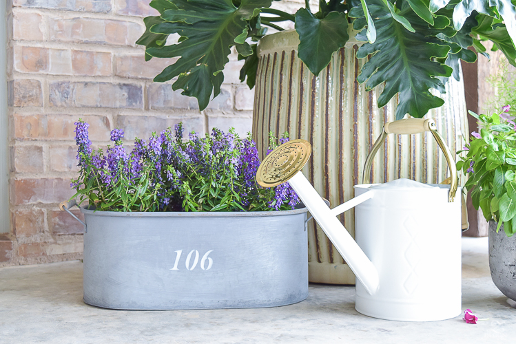 purple flowers white and brass watering can