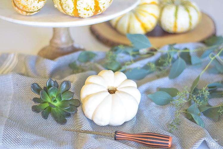 diy-pumpkin-succulents-1