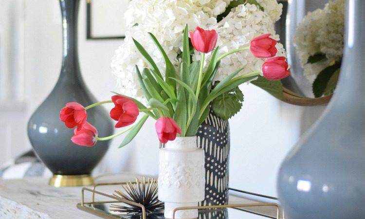 tips for the beginner blogger