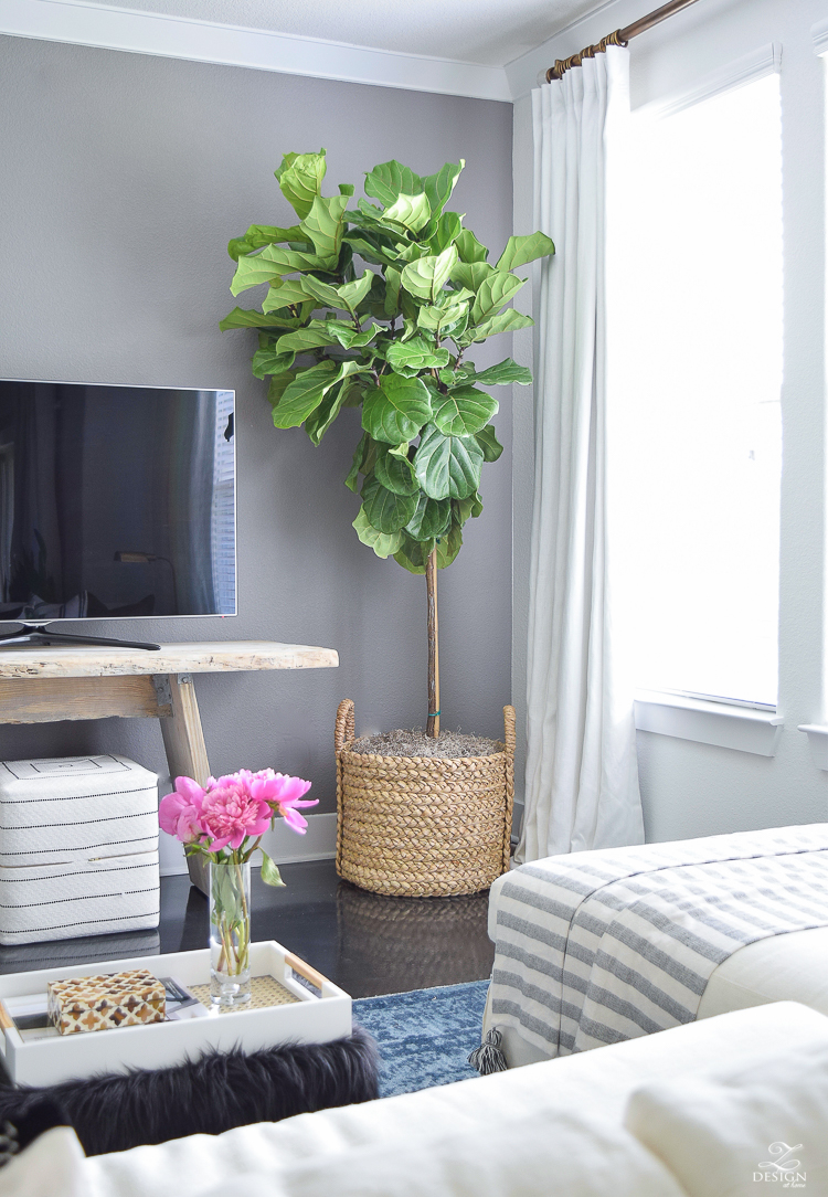tv wall fiddle leaf fig in basket toulouse ottoman cubes black and white gold bamboo lamp blue vintage inspired rug gray accent wall summer home tour -5