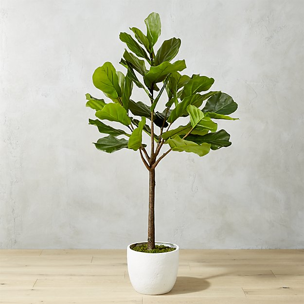 The Best Faux Fiddle Leaf Fig - Faux Fig Reviews