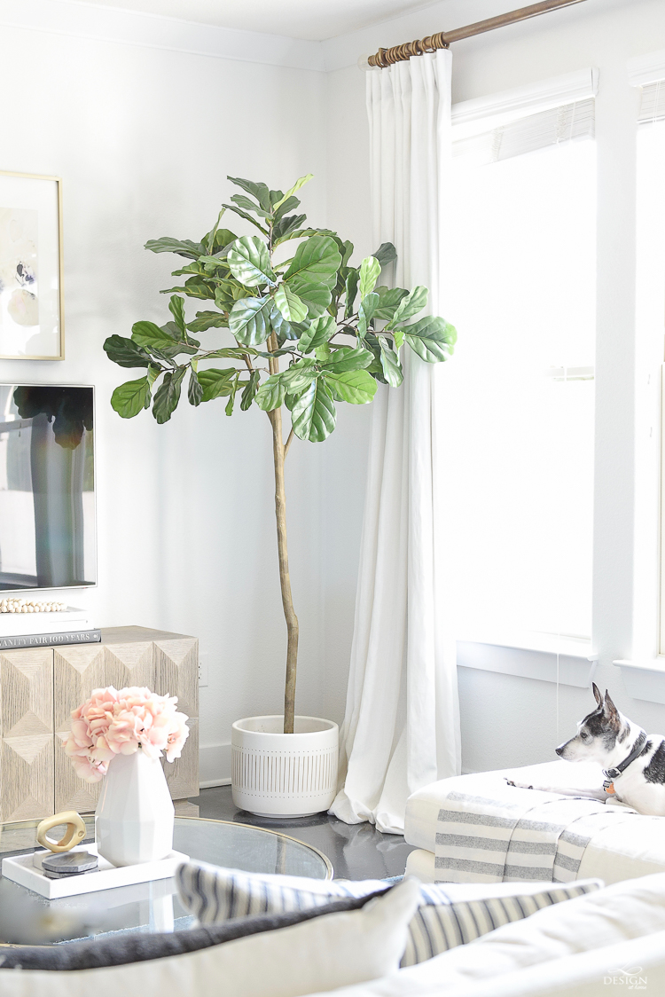 The best faux fiddle leaf fig tree - World Market Friends & Family Sale