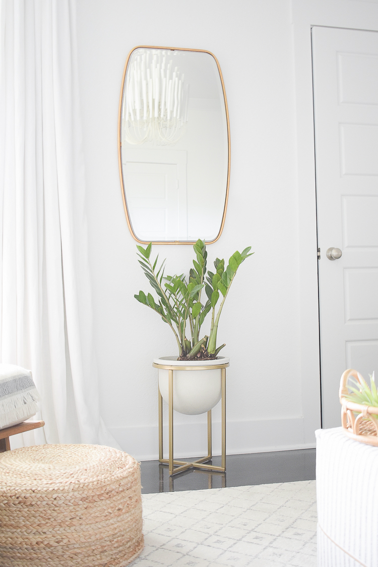 Styled for the season spring tour - modern house plant