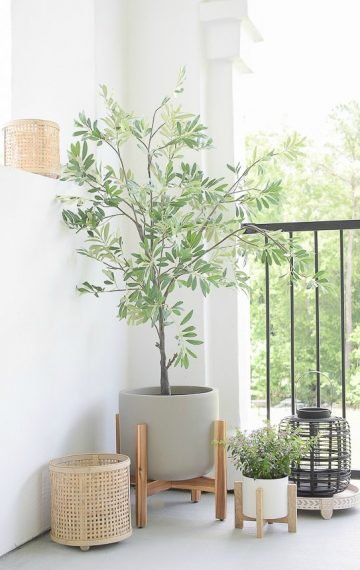 The Best Faux Olive Trees – Reviews & Sources
