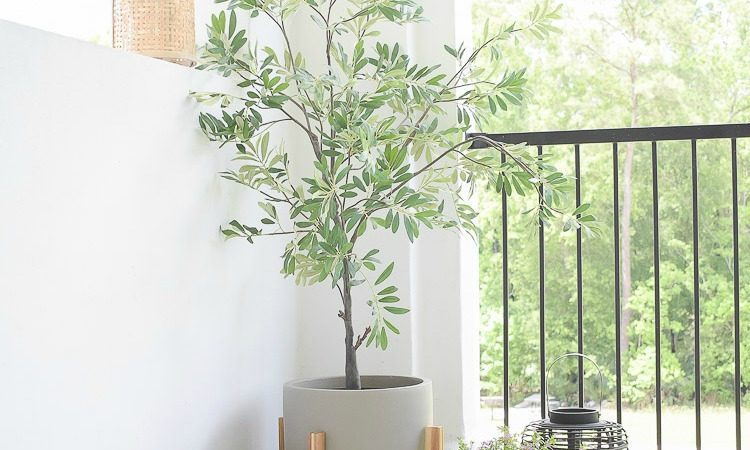 The Best Faux Olive Trees - Reviews & Sources