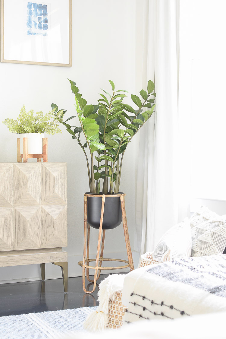 Small space, big style solutions - faux Zamiifolia Tree