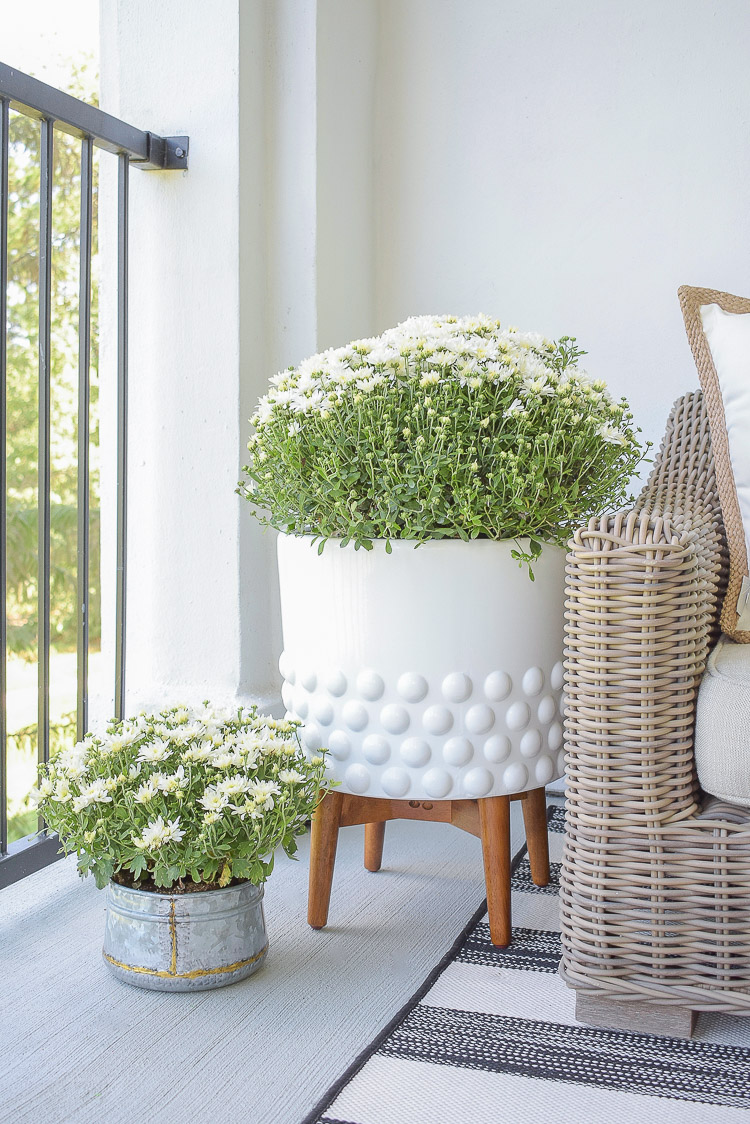 A Cozy Modern Fall Patio Tour - White dotted pot, galvanized small pot