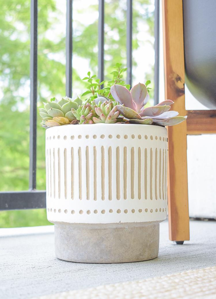 Modern white live succulent pot