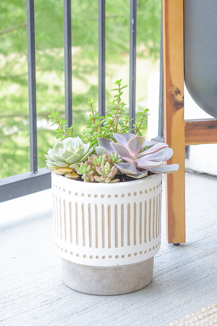 How to style a succulent pot - small white modern planter