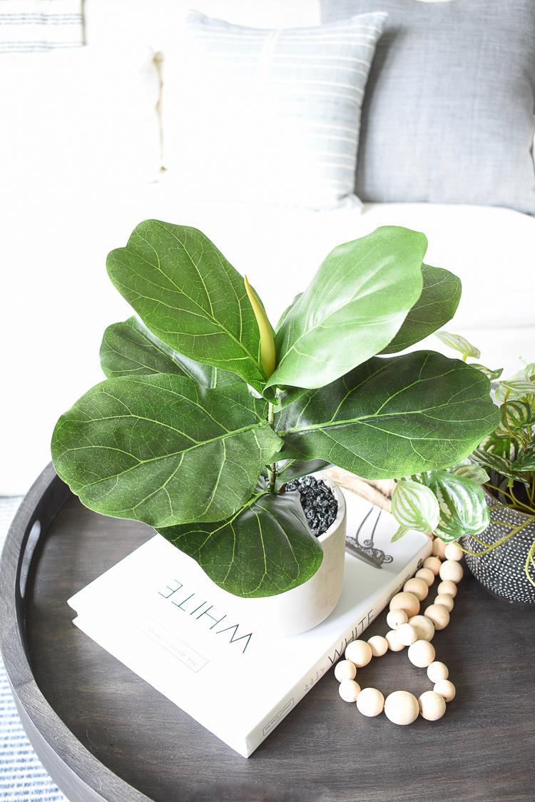 Best faux fig plant in cement pot