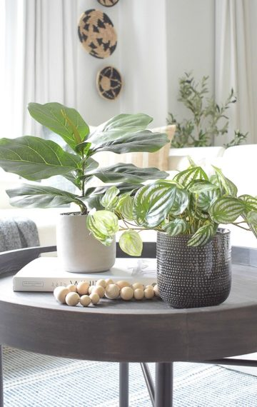 Best Modern Faux House Plants - Where to buy & how to style