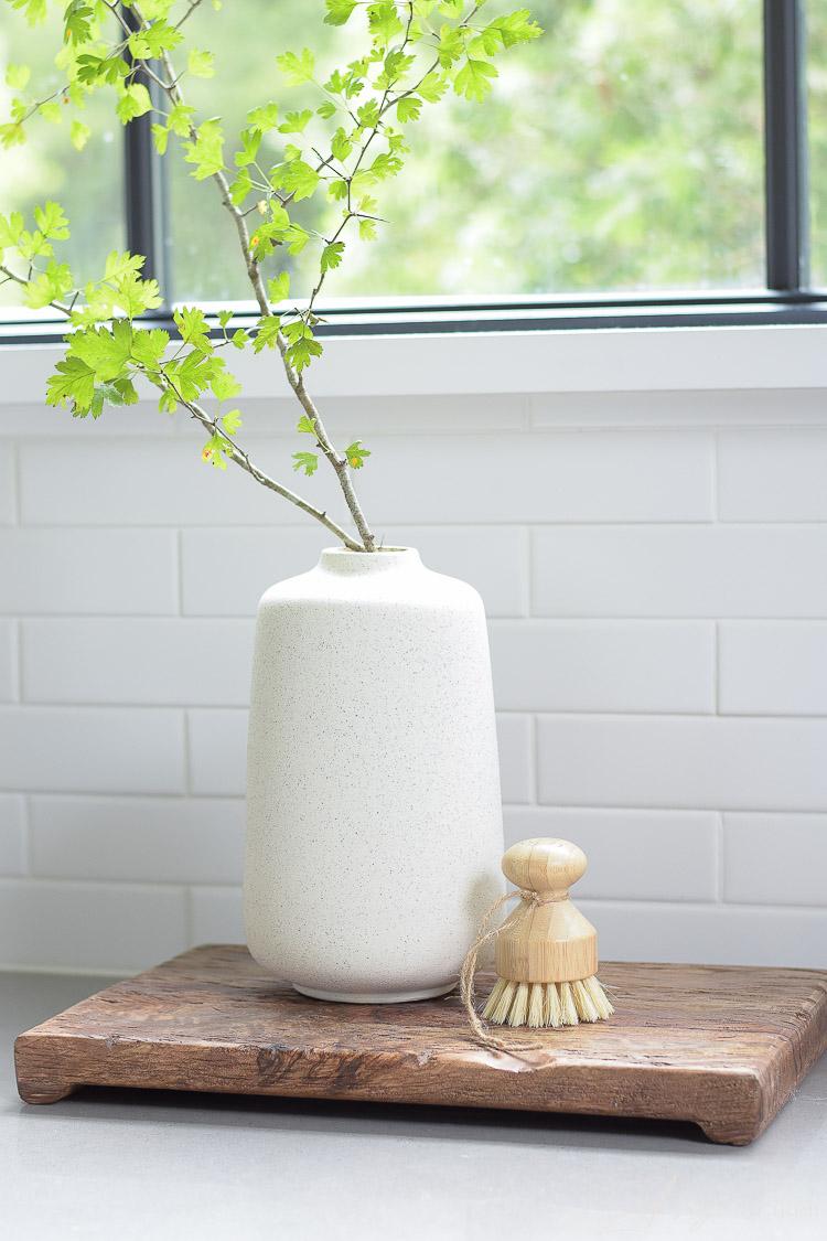 speckled vase with brach from outside and scrub vegetable brush